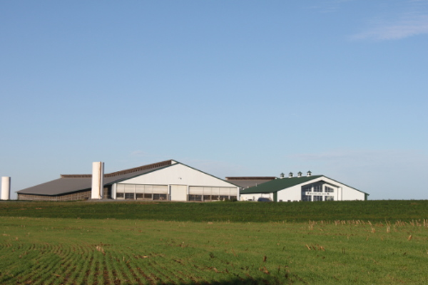 Dairy Operation, Lancaster, PA