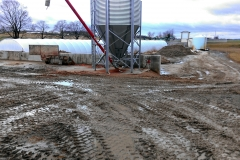 Myerstown Dairy Project