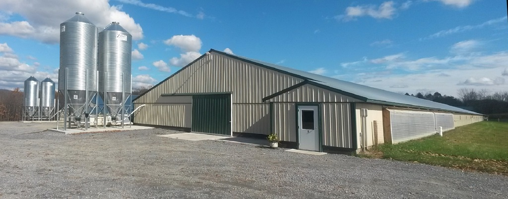 Poultry-Barns-3